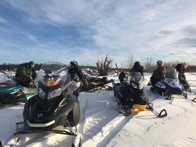 Snow Travelers