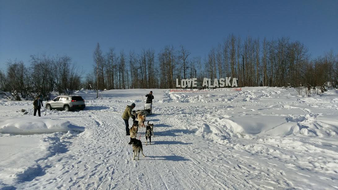 Good Samaritan sled dog team