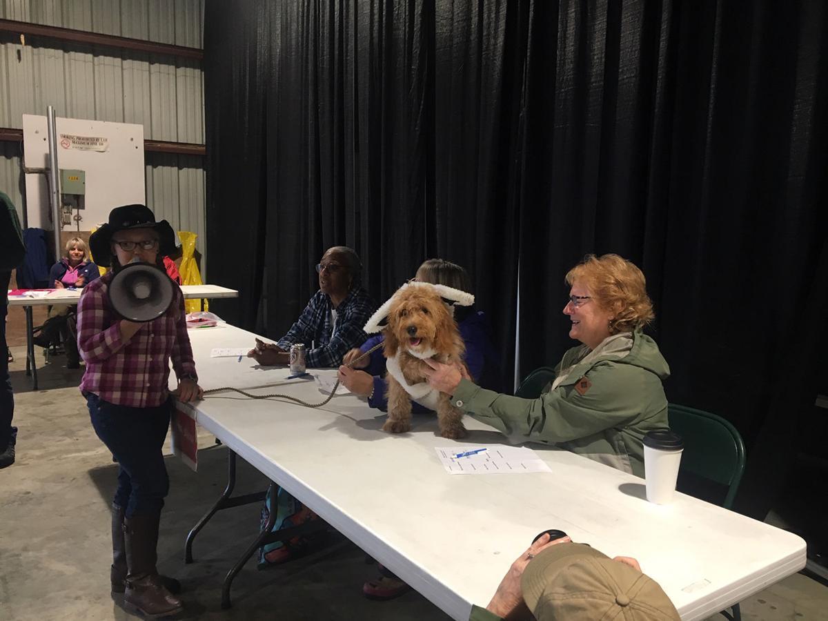 Dog costume contest Fair 2019