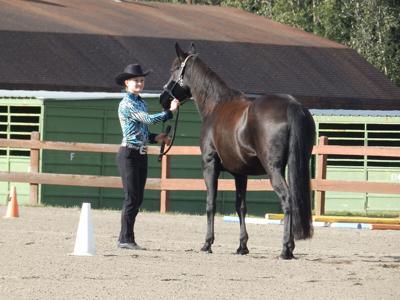 Horsemanship competition
