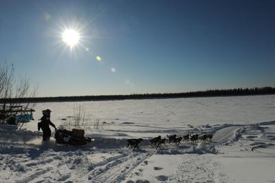 2017 Iditarod Trail Sled Dog Race