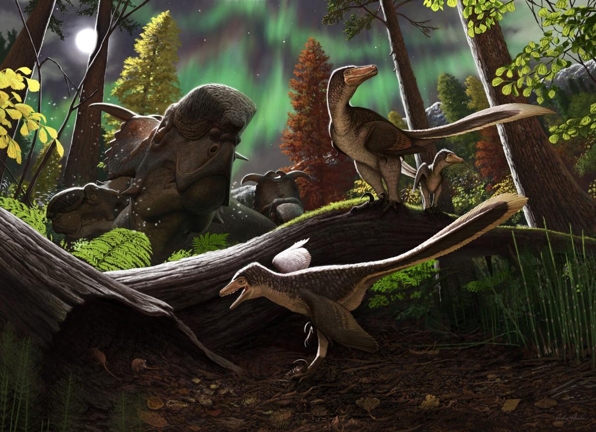Dinosaur jawbone