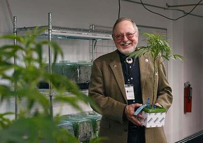 Don Young, Cannabis