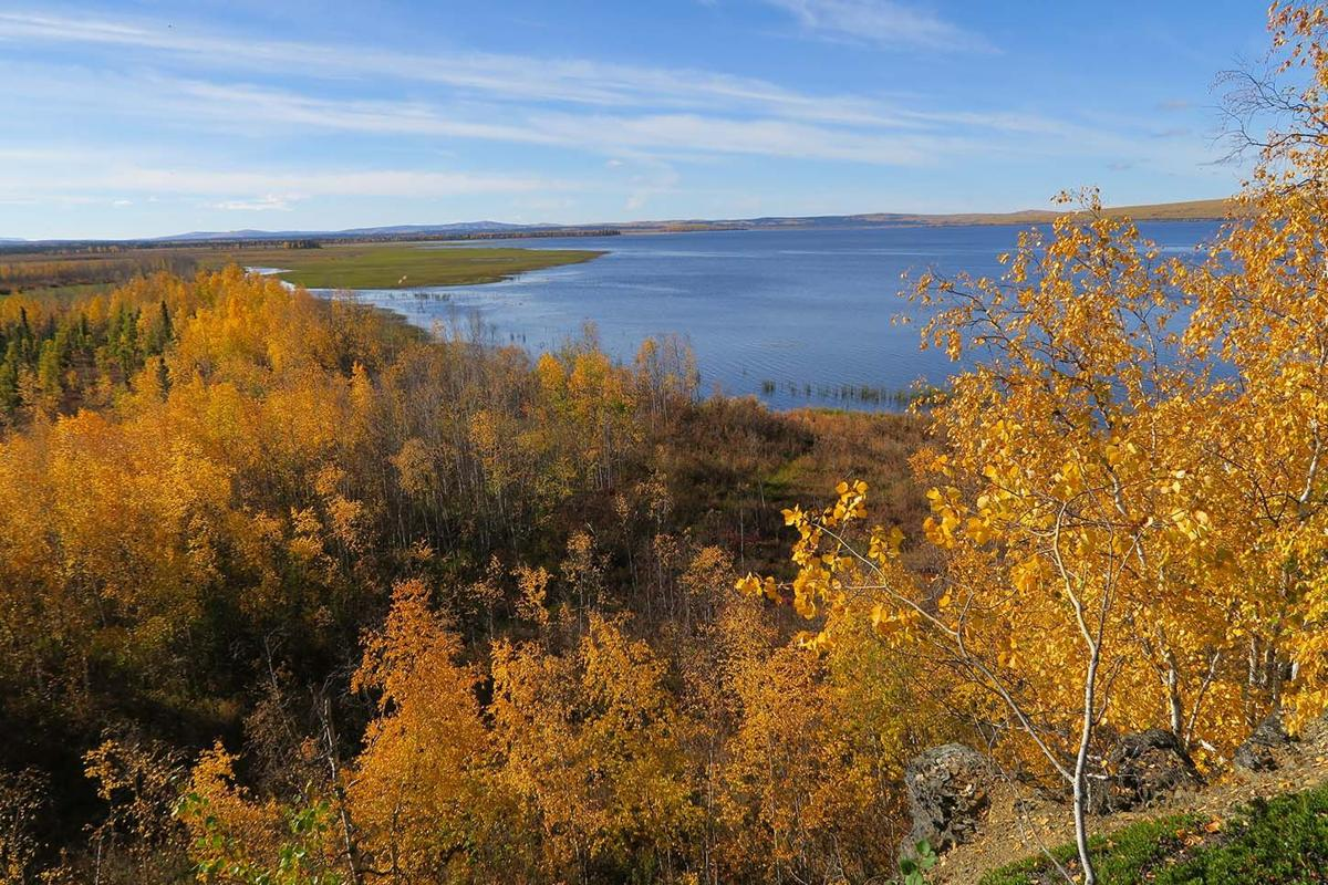 The colors of Lake Minchumina