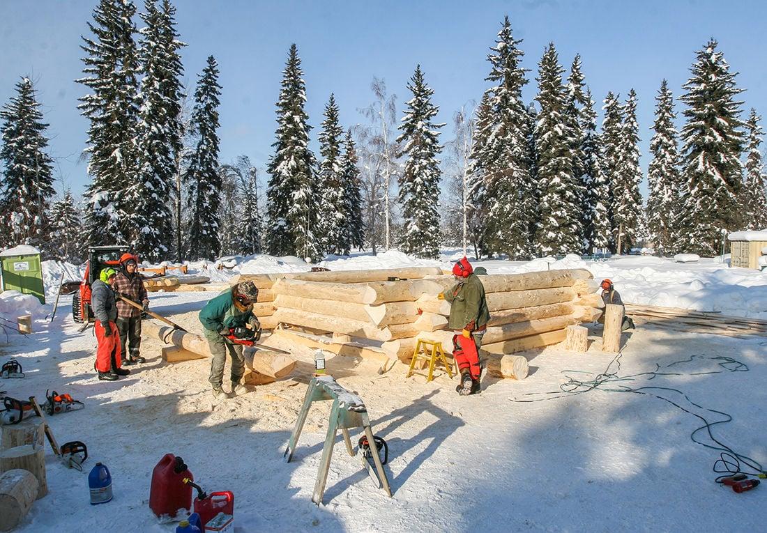 Building a cabin