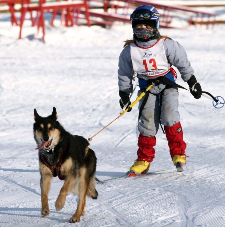 Great showings by Junior Skijorers on a three-dog day