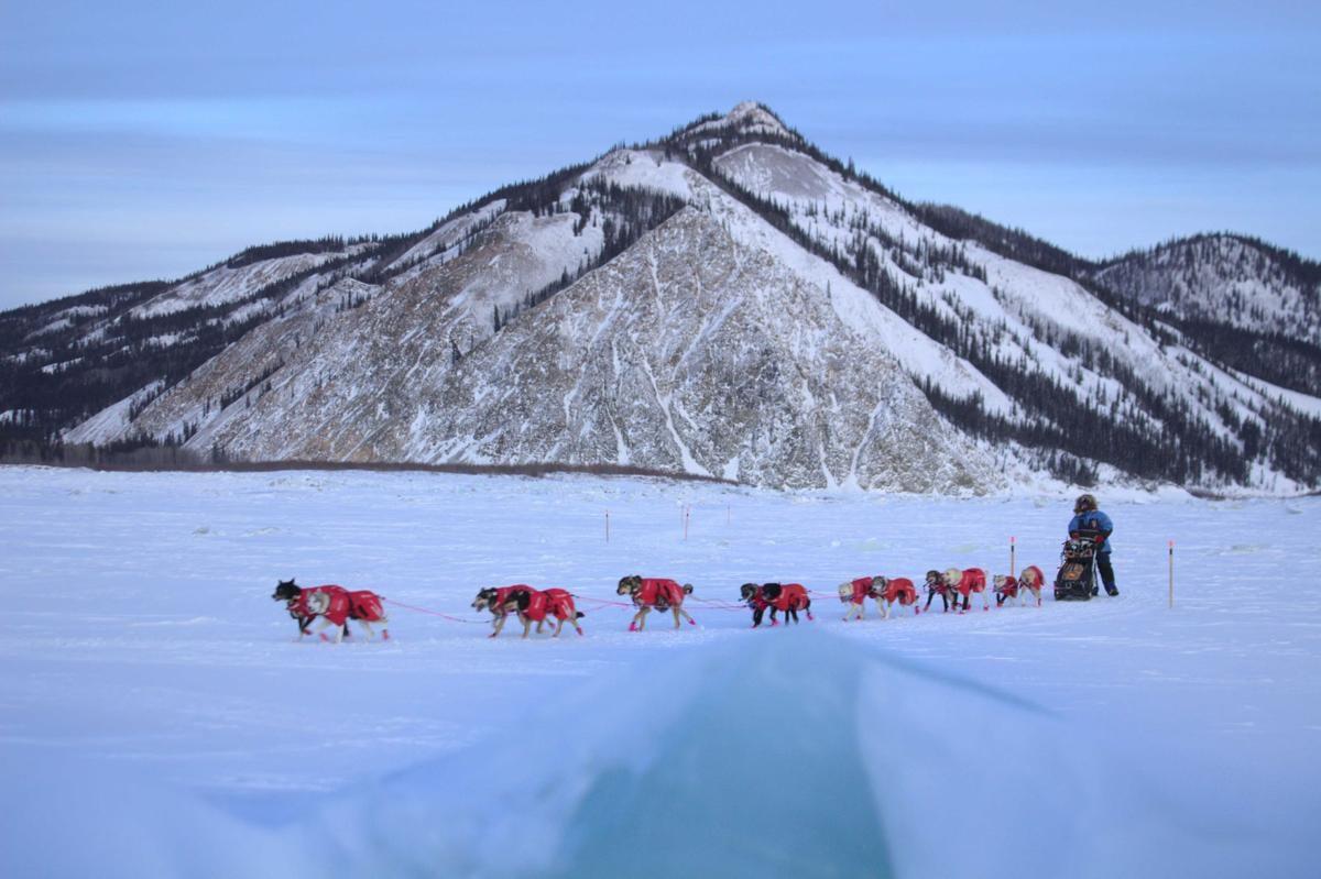 Yukon Quest 2020 - Eagle