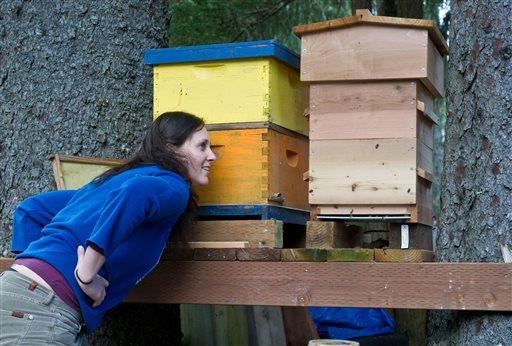 Juneau-Beekeeper