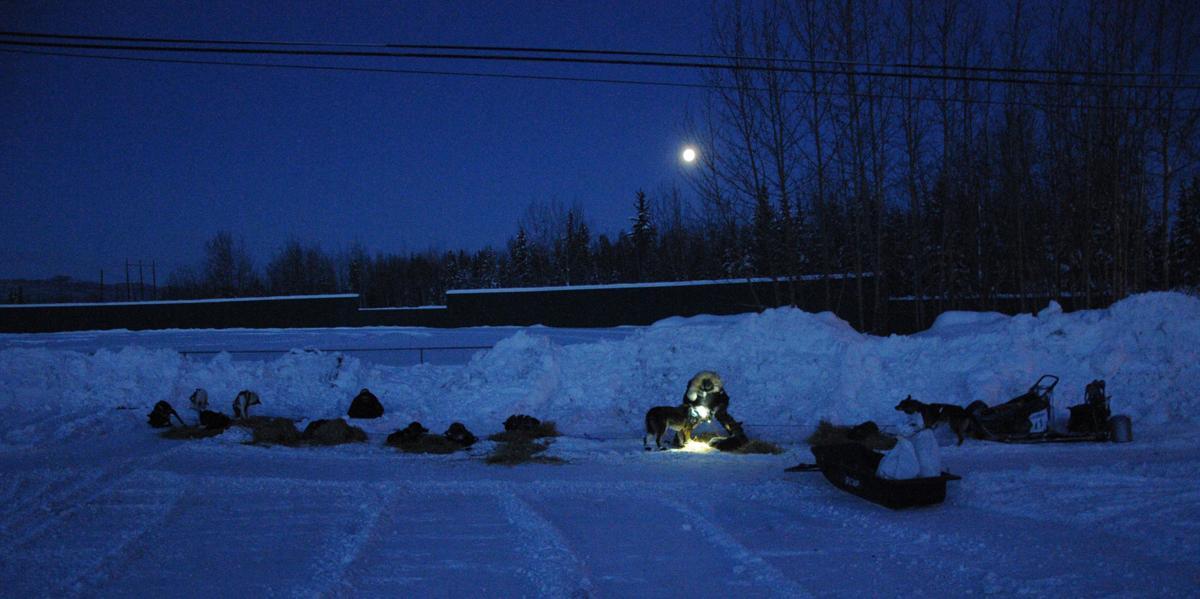 Yukon Quest 2020 - Pelly Crossing
