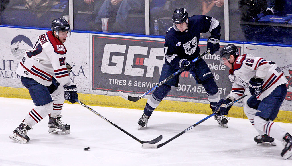 NAHL: Robertson Cup Stirs Memories For Ice Dogs