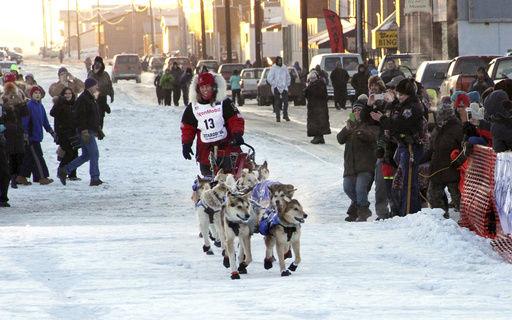 Iditarod Attacked Musher