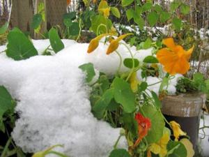 Snow expected in higher elevations, beginning tonight