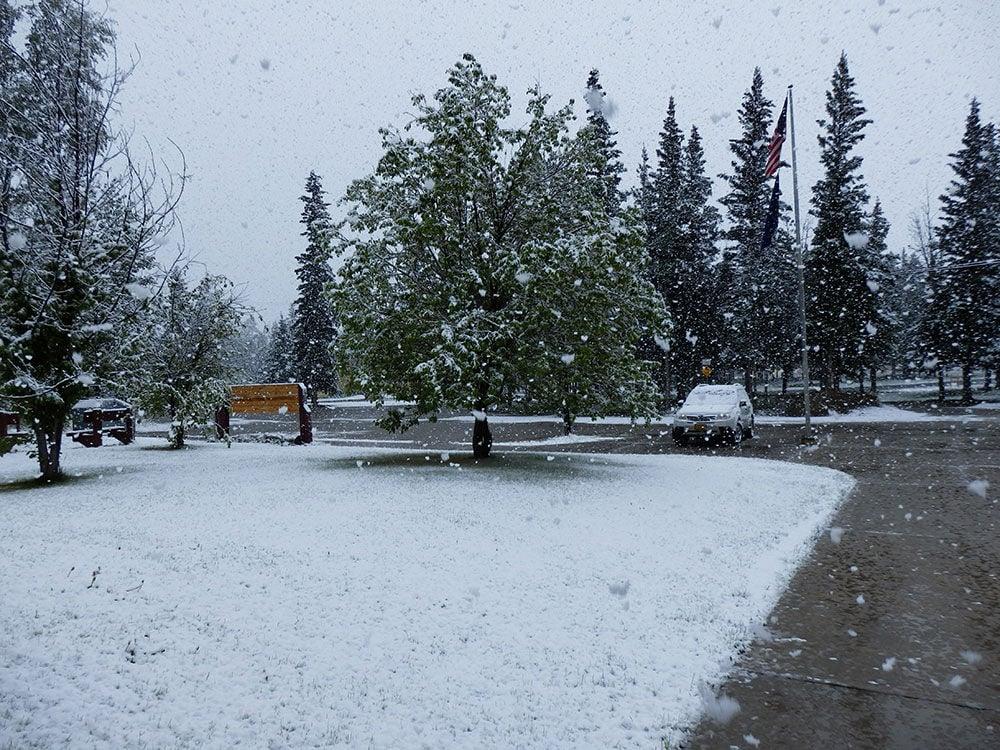 June snowfall in Delta Junction