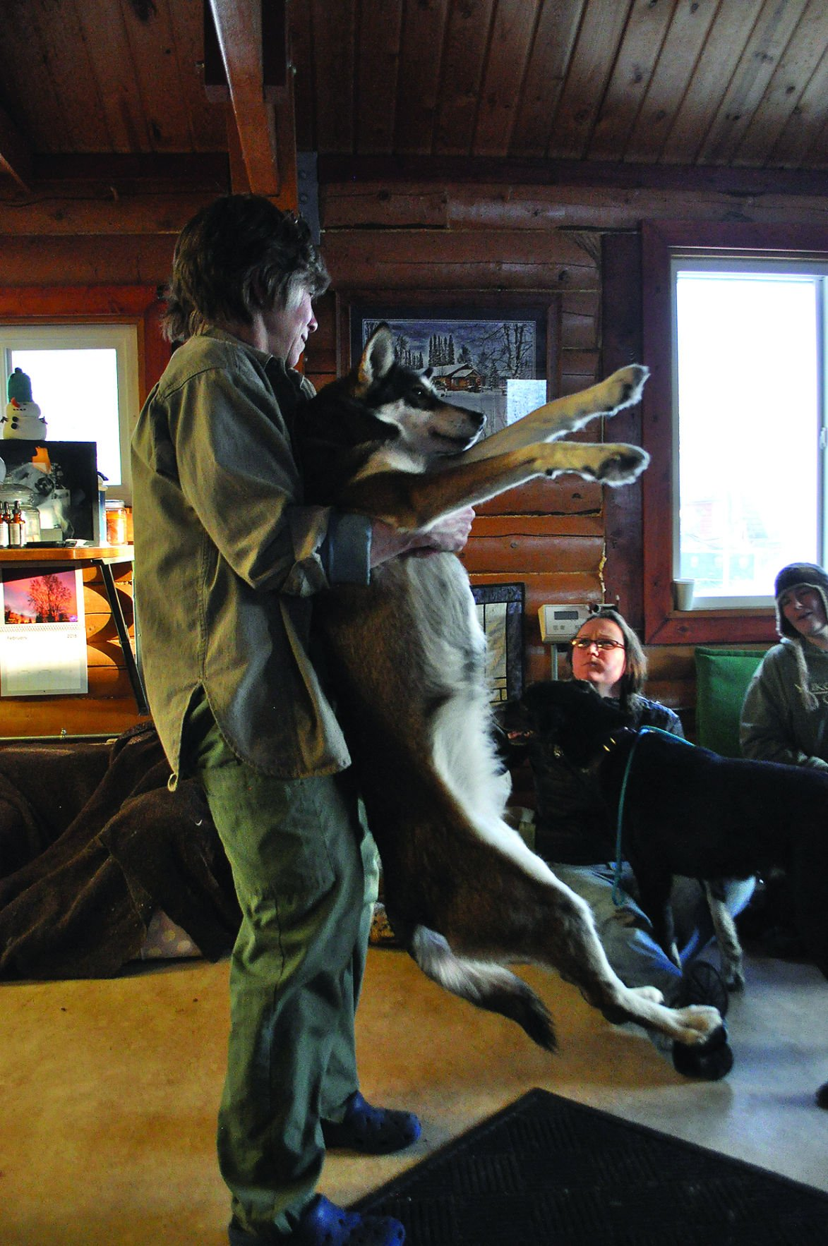 Canine chiropractic
