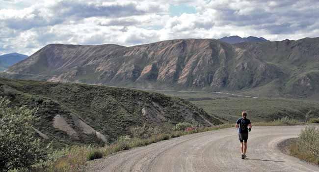 Man runs entire 92-mile road through Denali National Park and Preserve