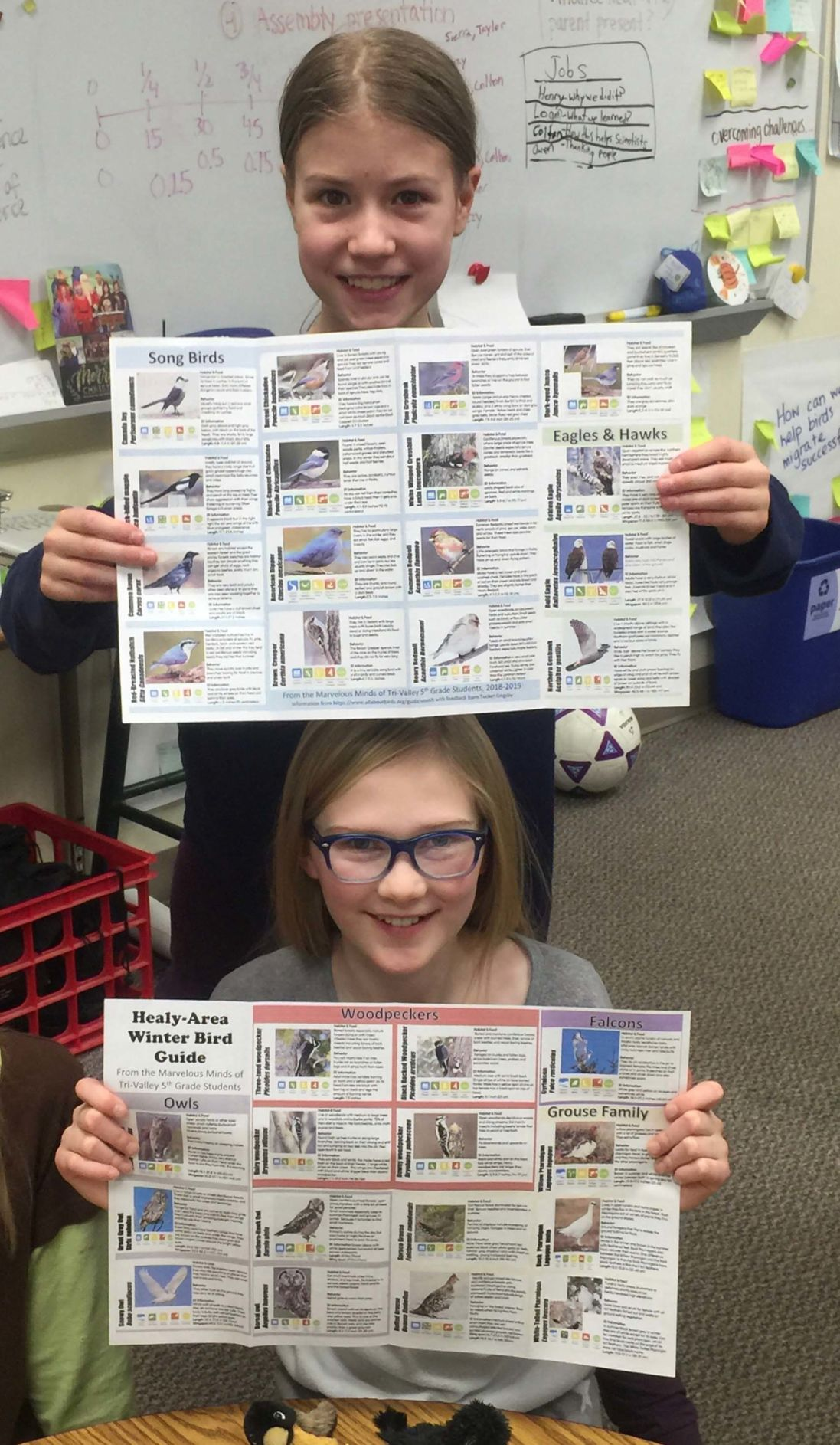 Healy School Christmas Assembly 2020 Students create detailed winter bird guide for Healy area | Our