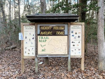 Hickory Hollow Trail Head (2)