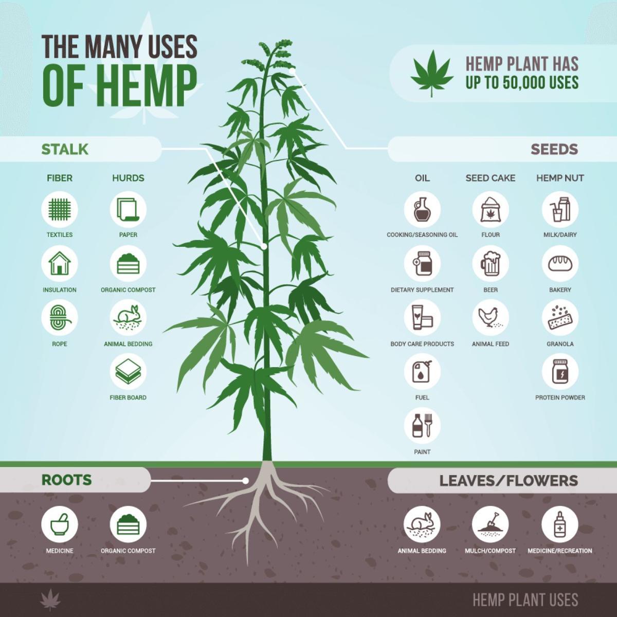 Hemp chart