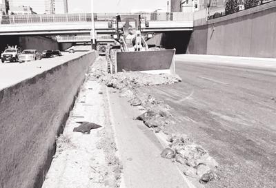 Pig Intestine Highway Spill