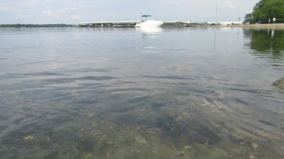 Smithville Lake Swimming Beaches Reopen