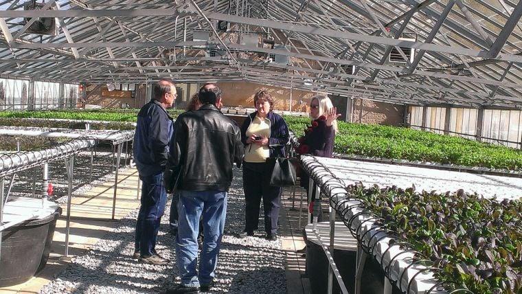 Greenhouse to serve developmentally disabled   Home & Garden