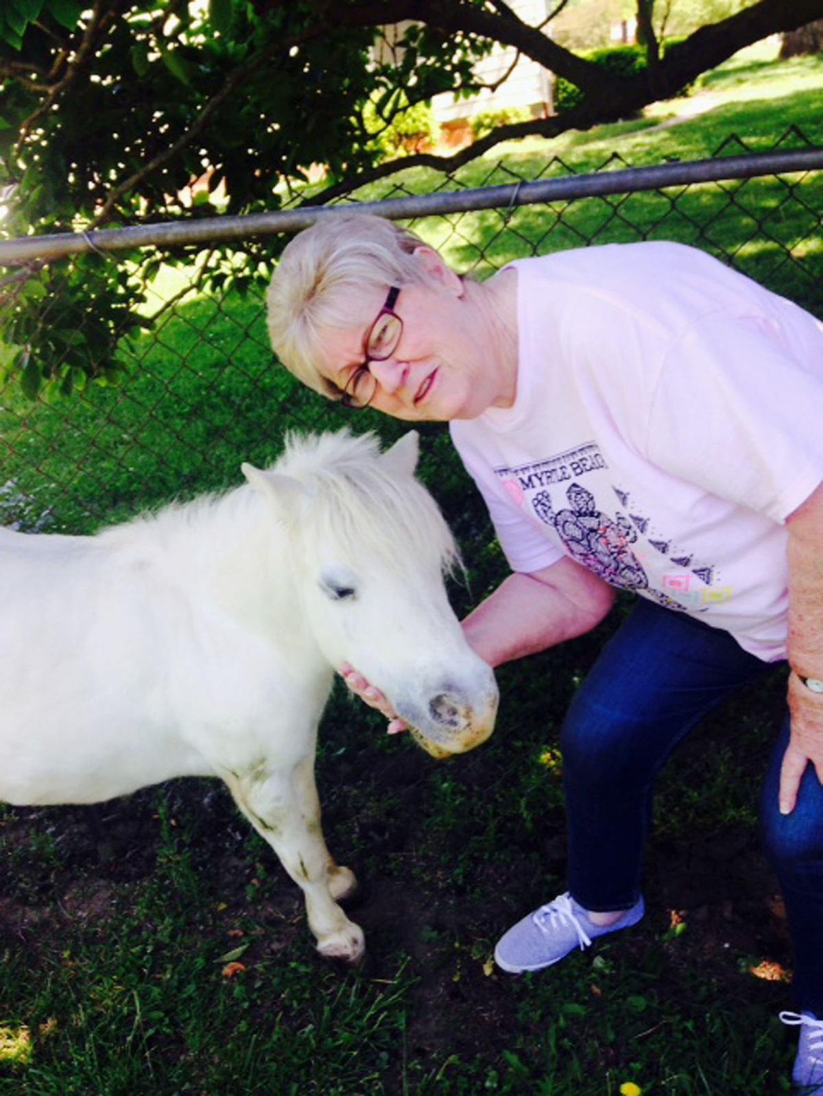170606_horses