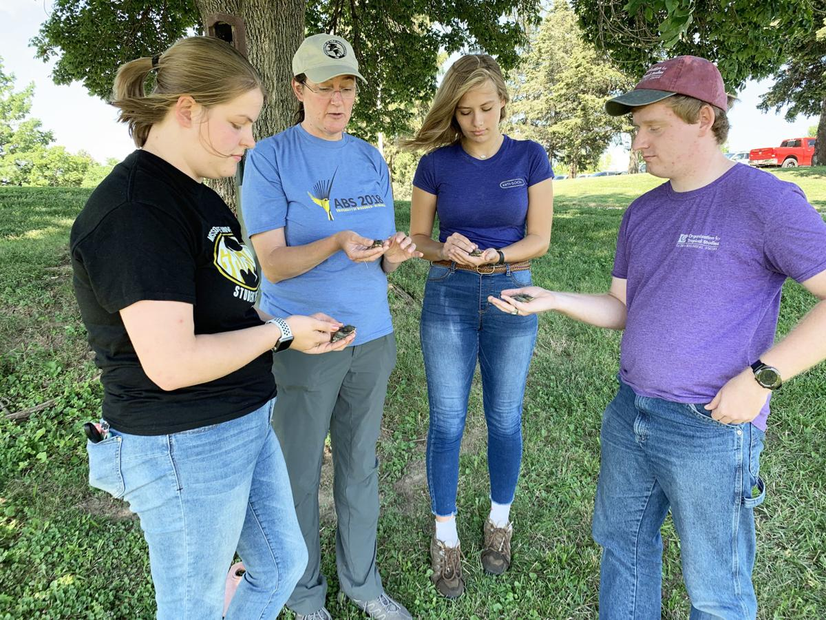 biology professor and students examine birds