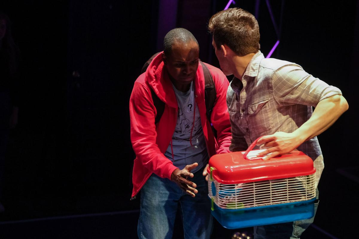 Review: CCM's 'Curious Incident of the Dog in the Night-Time' is utterly flawless