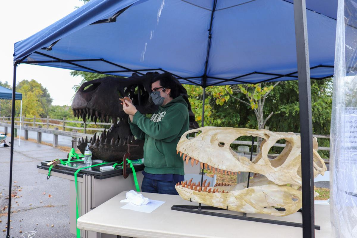 Drive-thru dinosaur experience