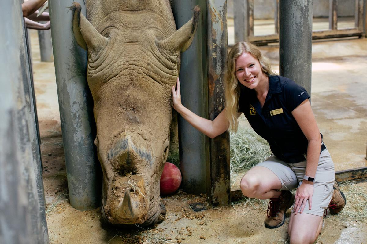 Zoo-Rhino_0006.jpg
