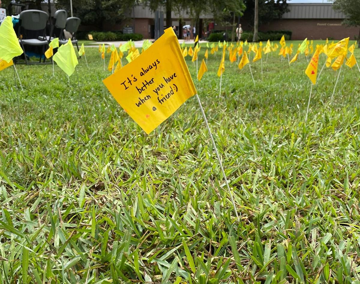 CAPS honors students lost to suicide through Field of Memories