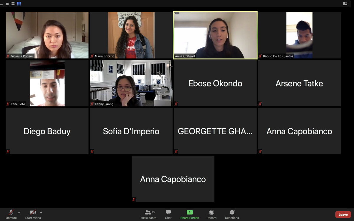 First Zoom meeting of ISA