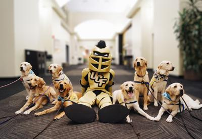 "STEP at UCF raises funds for service dog training through ""The Puppy Bachelor"""