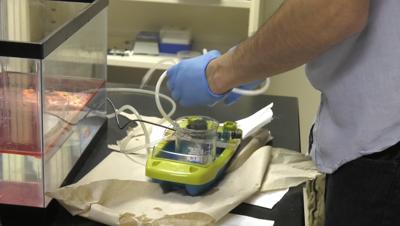 UCF research team wins EPA award for new oil-spill technology