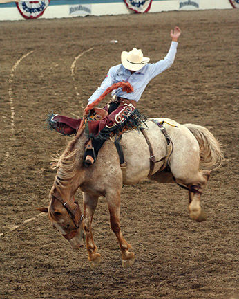 41st Baca Rodeo Series