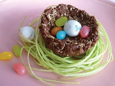 Edible Bird Nests Imitate Nature