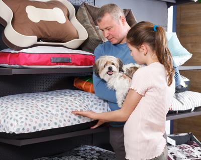 Ways to Reduce Your Pet's Carbon Paw Print