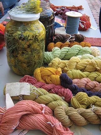 Native Dye Plants of NM