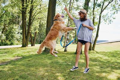 Rain or Shine, Dogs Give Us Good Reason to Exercise