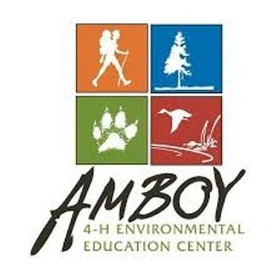 Buzzing about Amboy