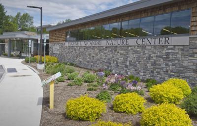 Massena Library, center hope residents take hike