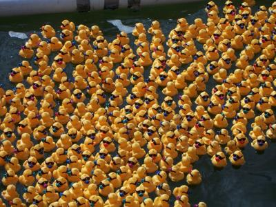 Fulton Lions' 31st Charby's Duck Derby launches Sept. 12