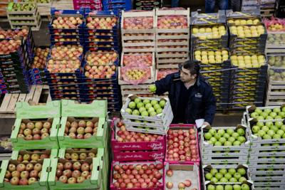 Global food prices set to keep on climbing
