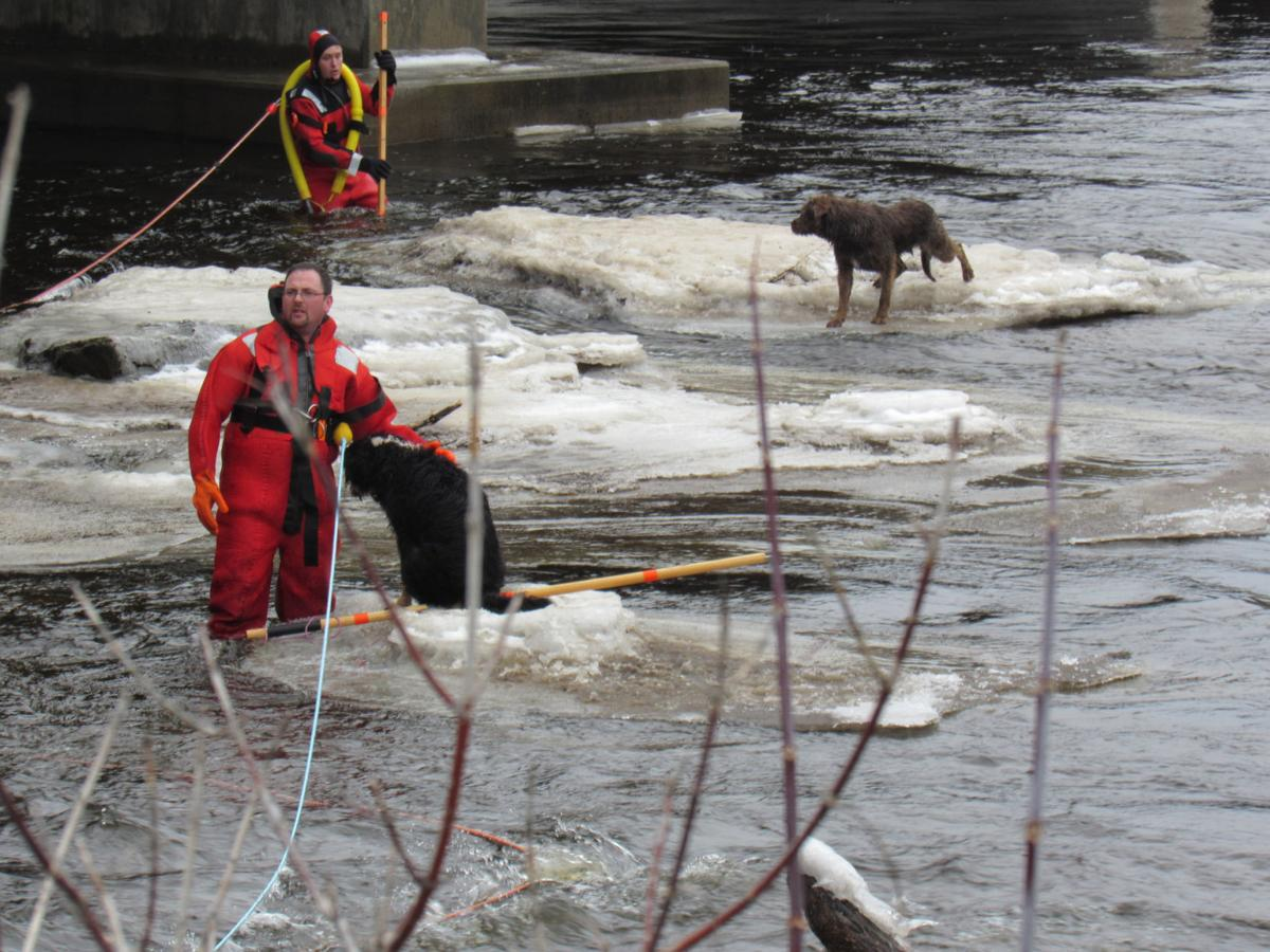 Crews rescue five dogs from icy Grasse River