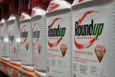 Roundup suits put Bayer in legal bind