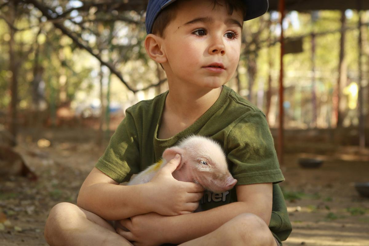 A passion for saving animals