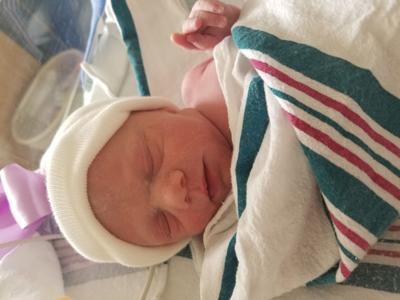 Aspen born April 22