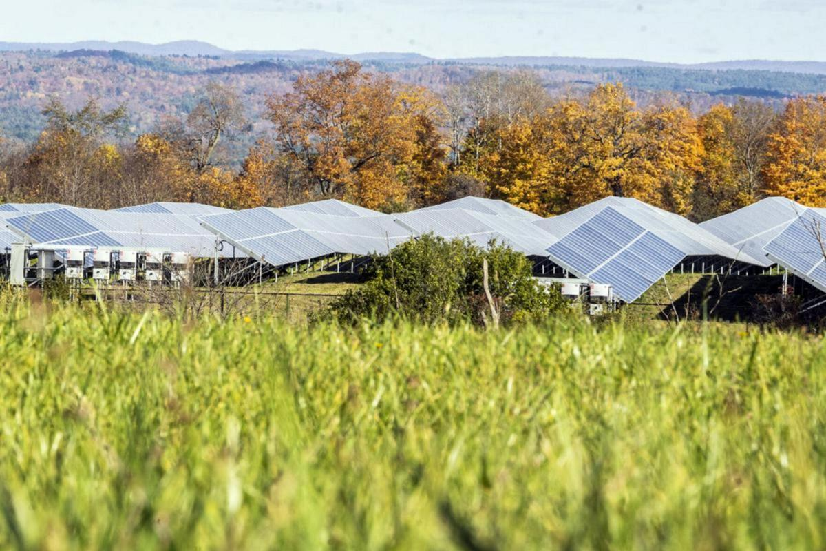 Lewis eyes county land for solar project