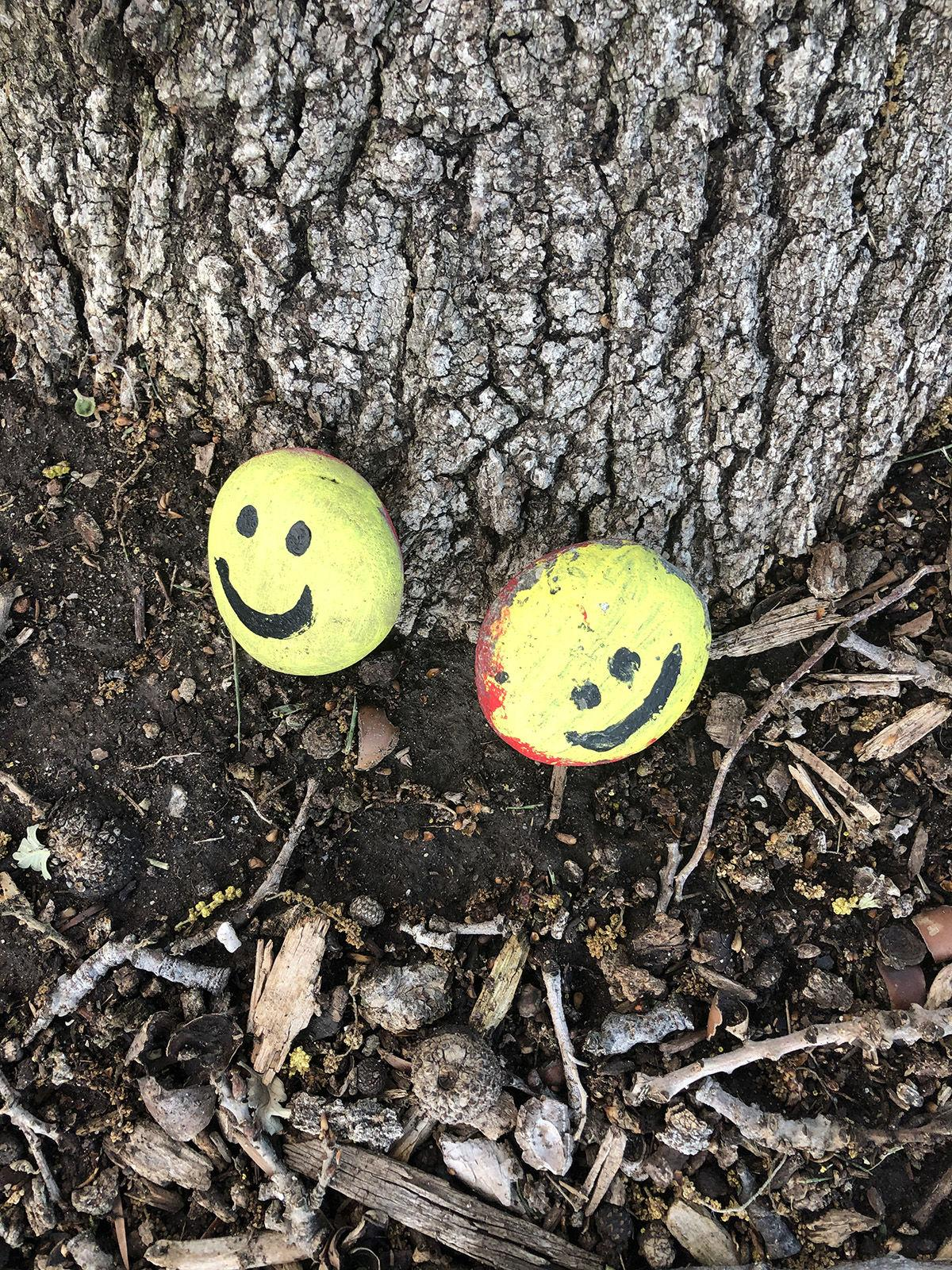 Smiley faces and words of hope One California neighborhood finds community can be a rock