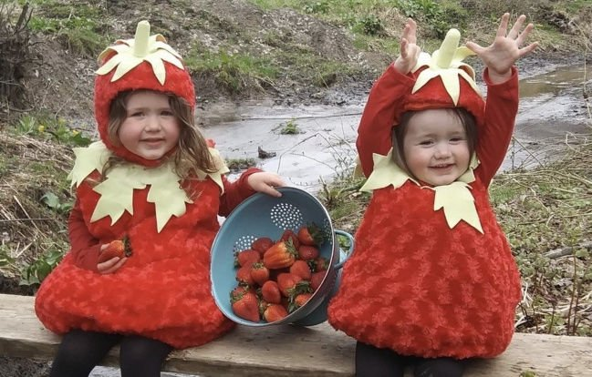 Don't miss Strawberry Festival and fireworks Friday, June 28